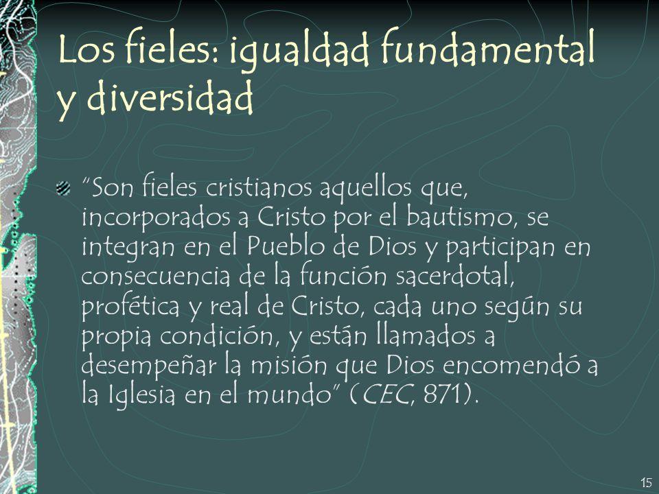 Los fieles: igualdad fundamental y diversidad