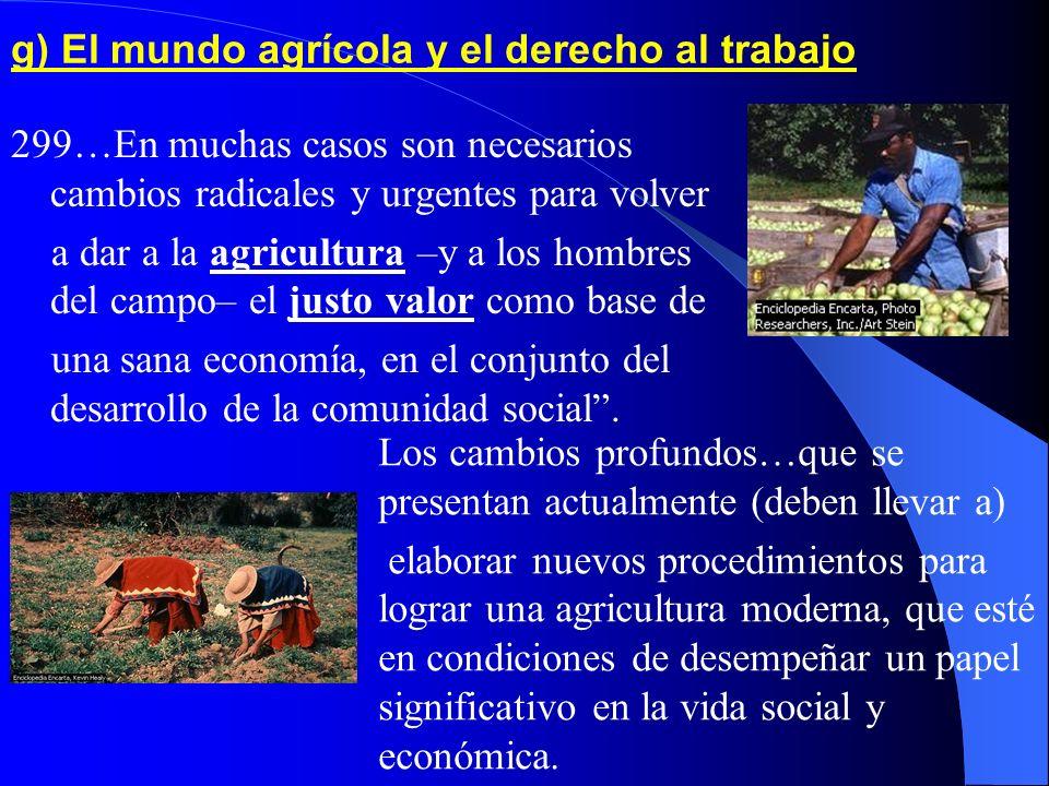 g) El mundo agrícola y el derecho al trabajo
