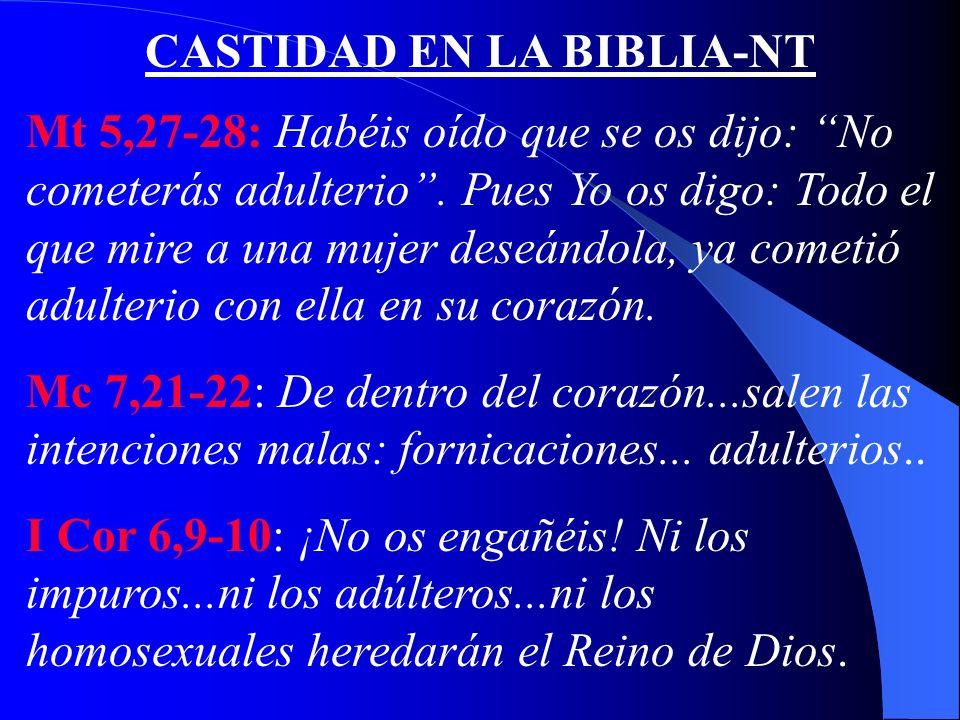 CASTIDAD EN LA BIBLIA-NT