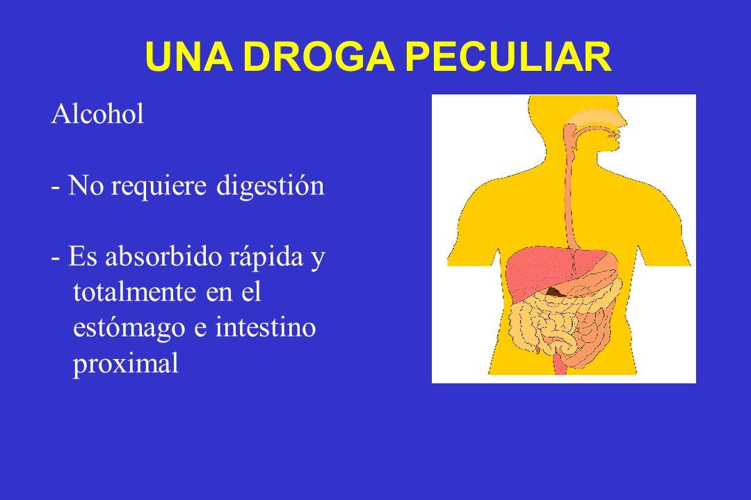UNA DROGA PECULIAR Alcohol No requiere digestión Es absorbido rápida y