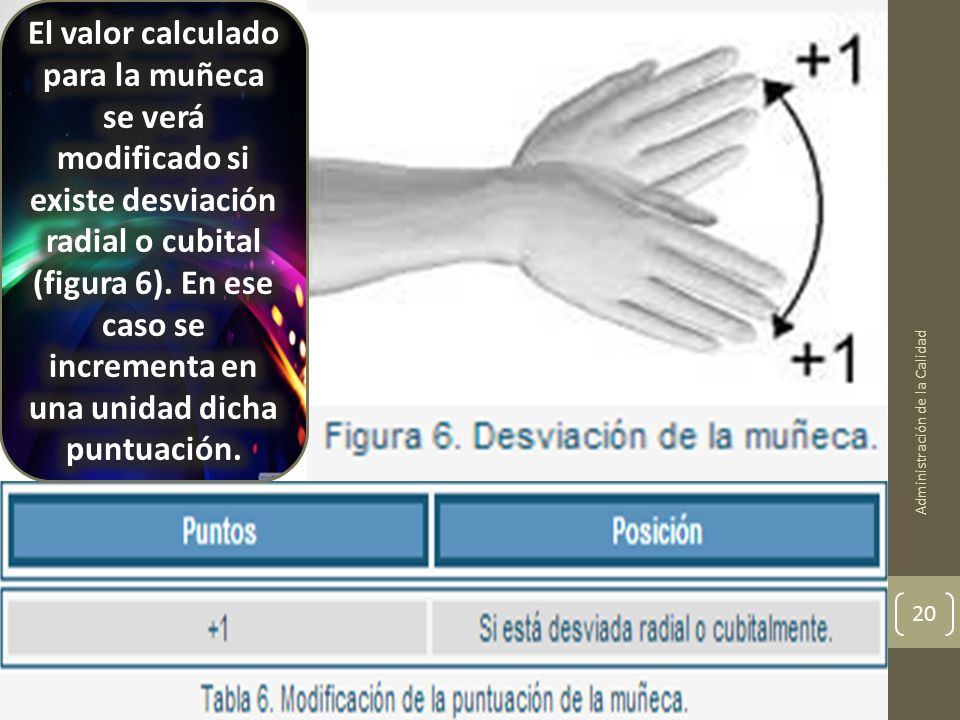 El valor calculado para la muñeca se verá modificado si existe desviación radial o cubital (figura 6). En ese caso se incrementa en una unidad dicha puntuación.