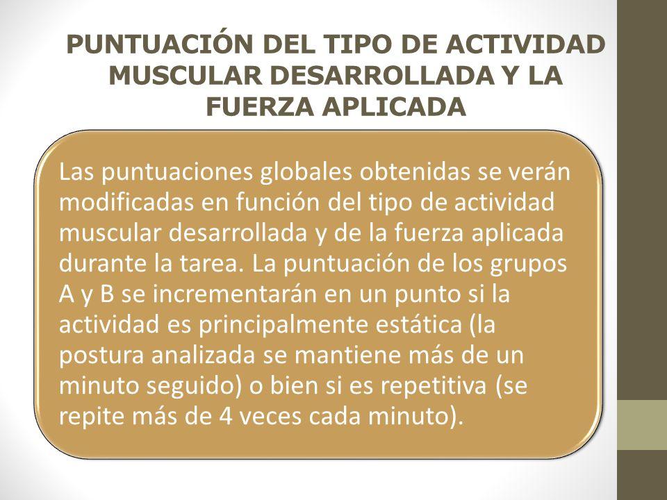 PUNTUACIÓN DEL TIPO DE ACTIVIDAD MUSCULAR DESARROLLADA Y LA FUERZA APLICADA