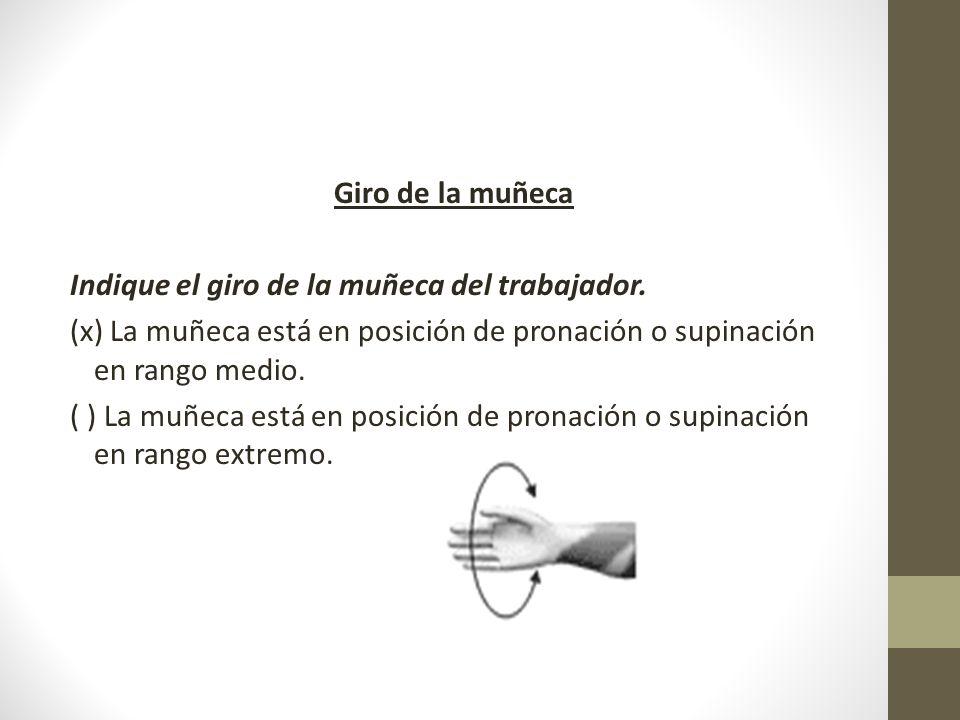 Giro de la muñeca Indique el giro de la muñeca del trabajador. (x) La muñeca está en posición de pronación o supinación en rango medio.
