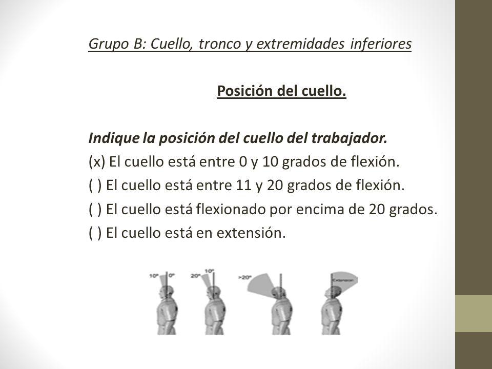 Grupo B: Cuello, tronco y extremidades inferiores