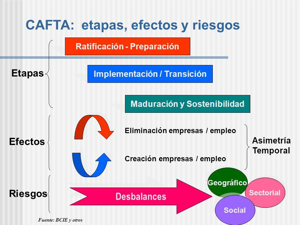 CAFTA: etapas, efectos y riesgos