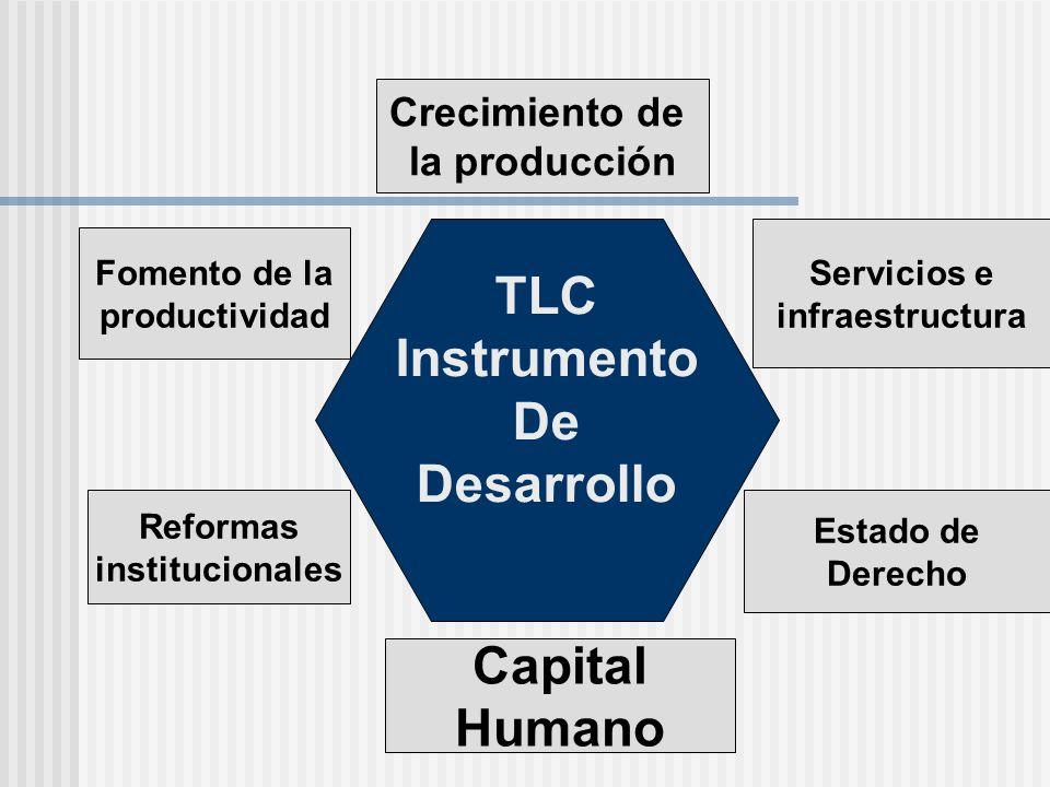 TLC Instrumento De Desarrollo Capital Humano
