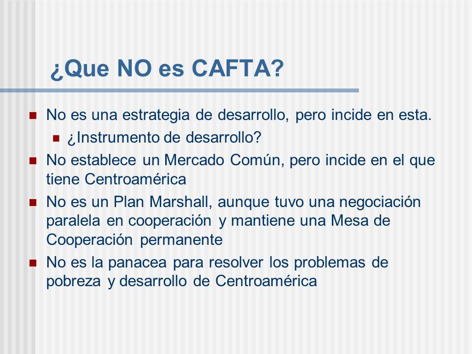 ¿Que NO es CAFTA No es una estrategia de desarrollo, pero incide en esta. ¿Instrumento de desarrollo