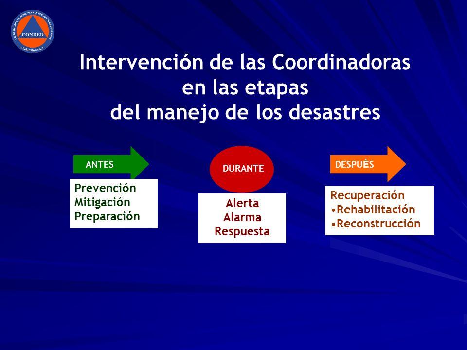 Intervención de las Coordinadoras en las etapas