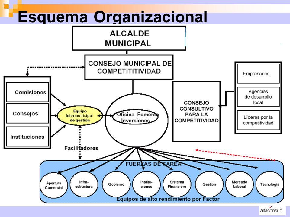 Esquema Organizacional