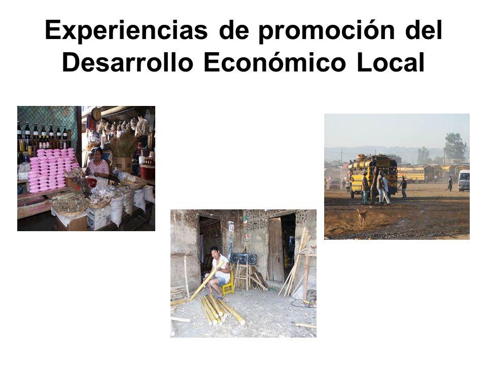 Experiencias de promoción del Desarrollo Económico Local