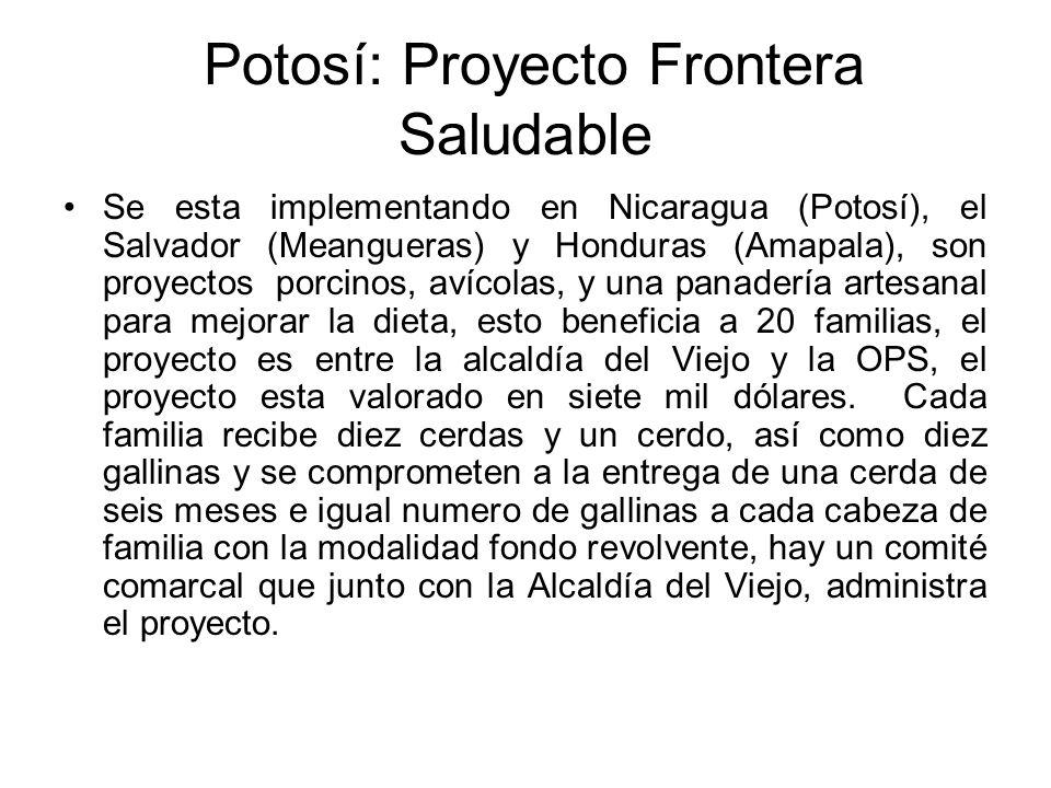 Potosí: Proyecto Frontera Saludable