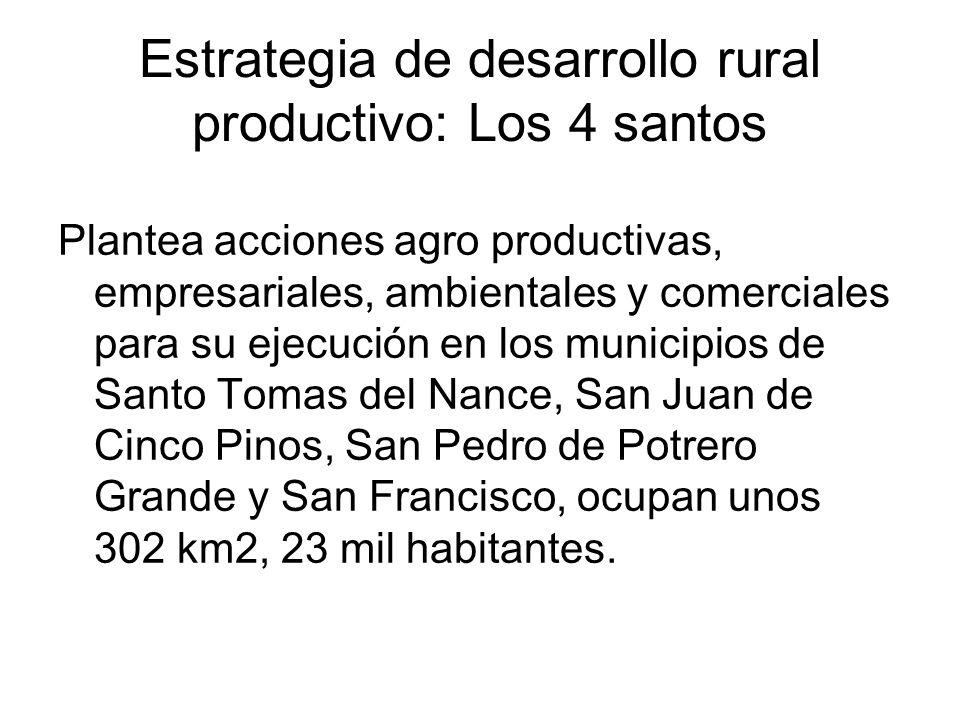 Estrategia de desarrollo rural productivo: Los 4 santos