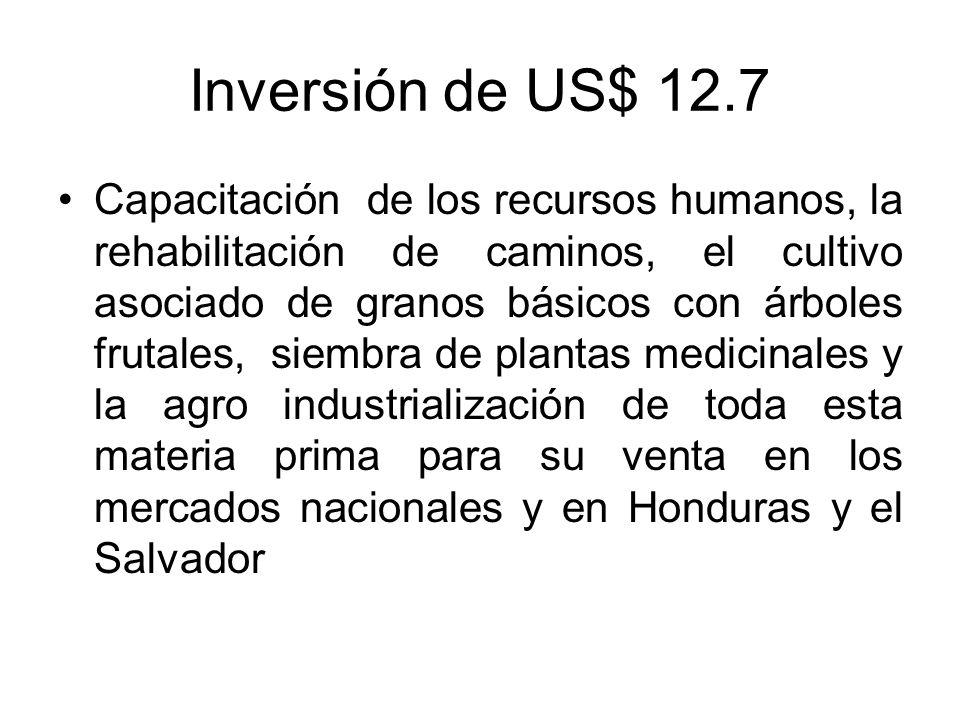 Inversión de US$ 12.7