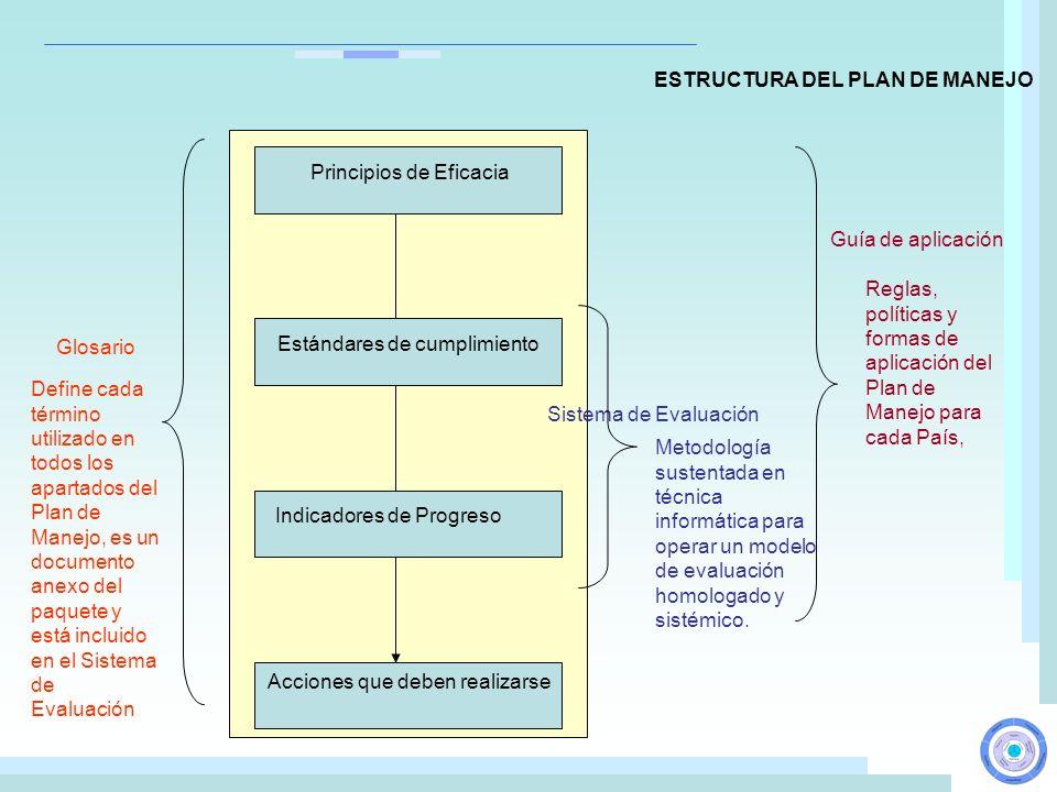 ESTRUCTURA DEL PLAN DE MANEJO