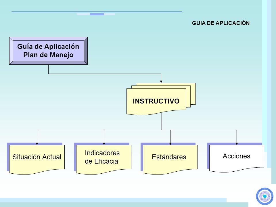Guía de Aplicación Plan de Manejo INSTRUCTIVO