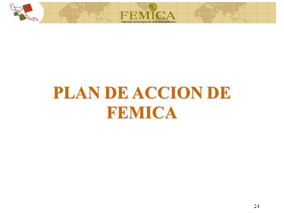 PLAN DE ACCION DE FEMICA