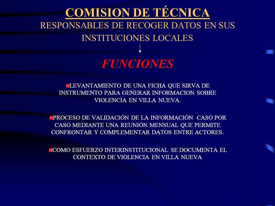 COMISION DE TÉCNICA RESPONSABLES DE RECOGER DATOS EN SUS INSTITUCIONES LOCALES FUNCIONES