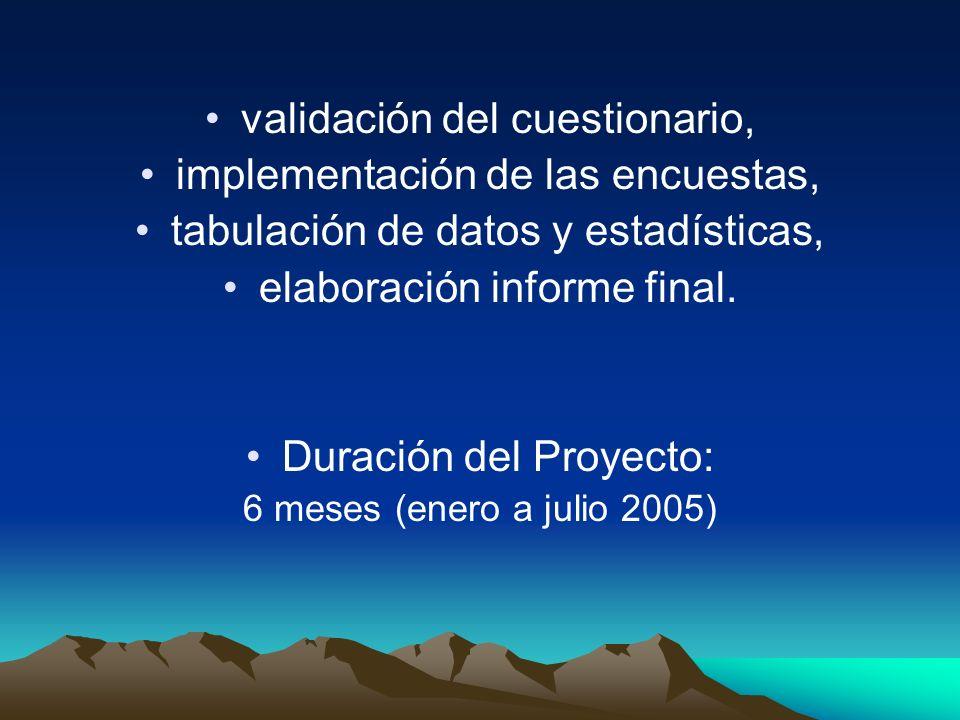 validación del cuestionario, implementación de las encuestas,