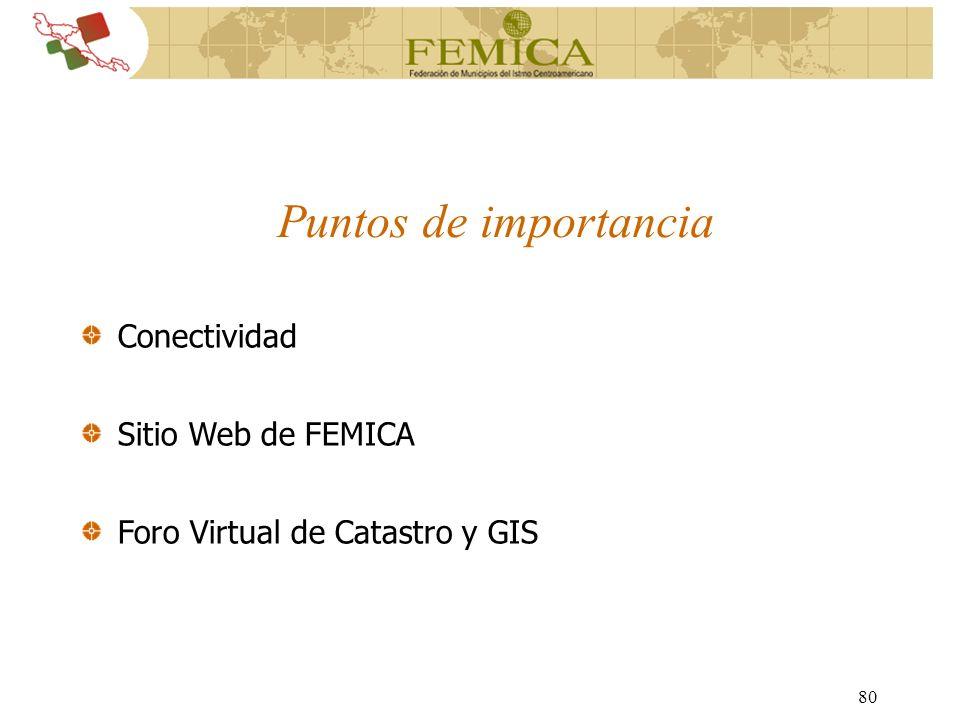 Puntos de importancia Conectividad Sitio Web de FEMICA