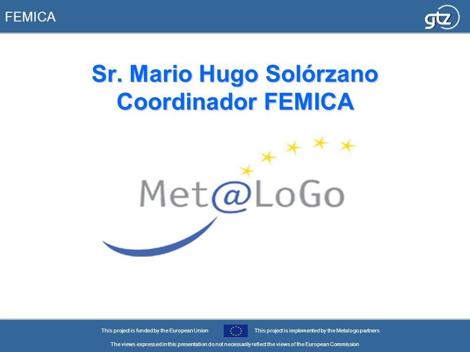 Sr. Mario Hugo Solórzano Coordinador FEMICA