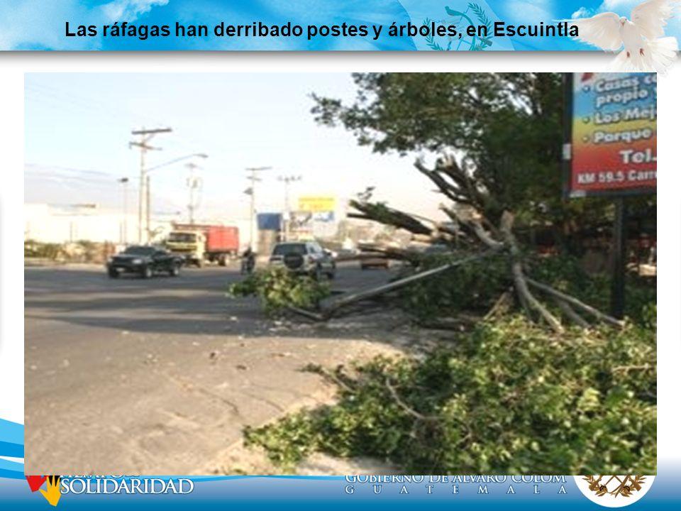 Las ráfagas han derribado postes y árboles, en Escuintla