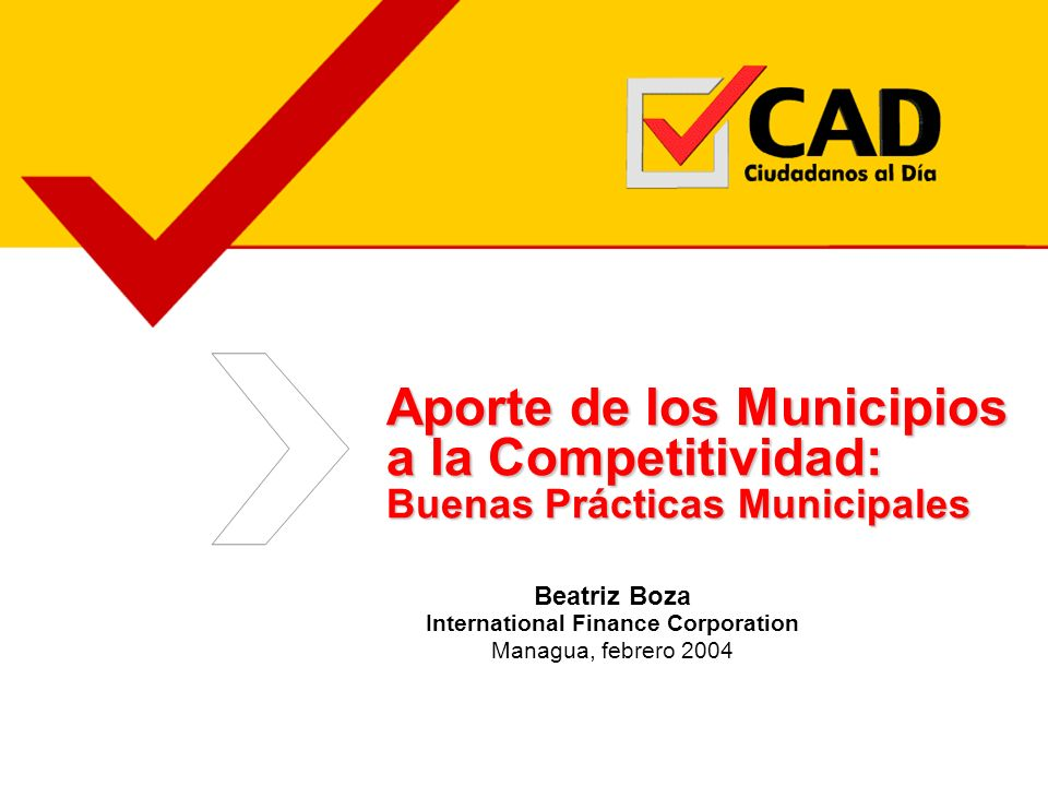 Beatriz Boza International Finance Corporation Managua, febrero 2004