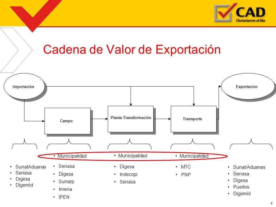 Cadena de Valor de Exportación