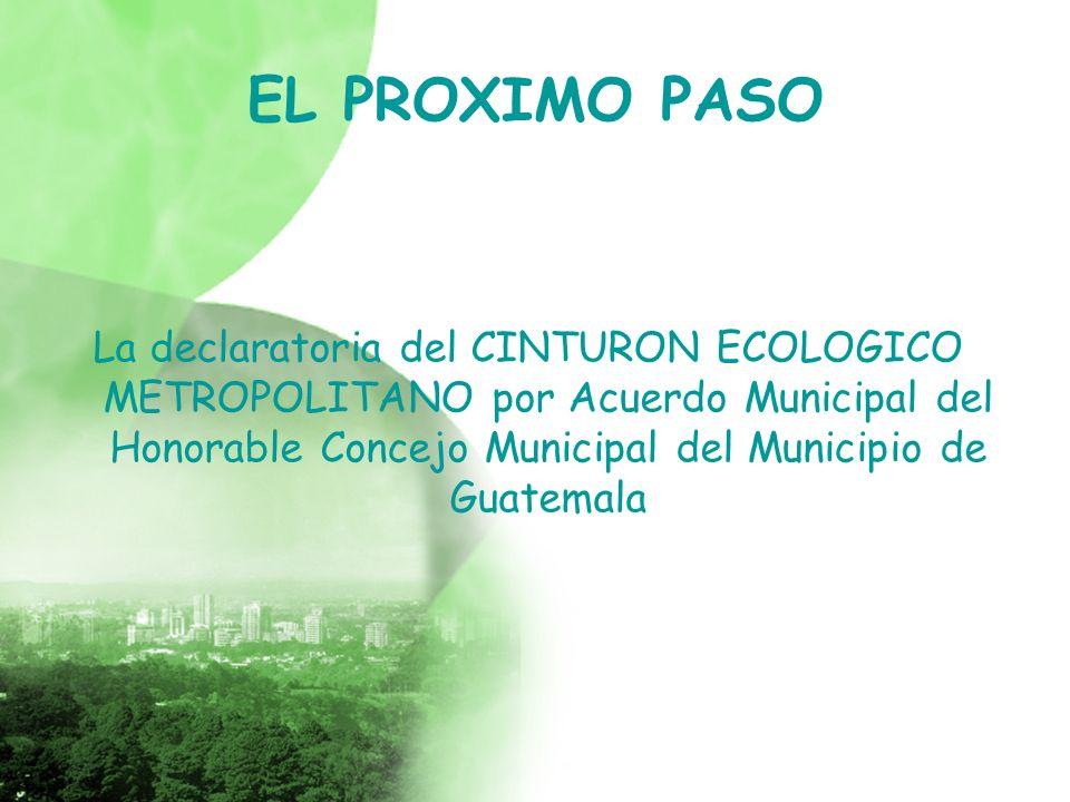 EL PROXIMO PASO La declaratoria del CINTURON ECOLOGICO METROPOLITANO por Acuerdo Municipal del Honorable Concejo Municipal del Municipio de Guatemala.