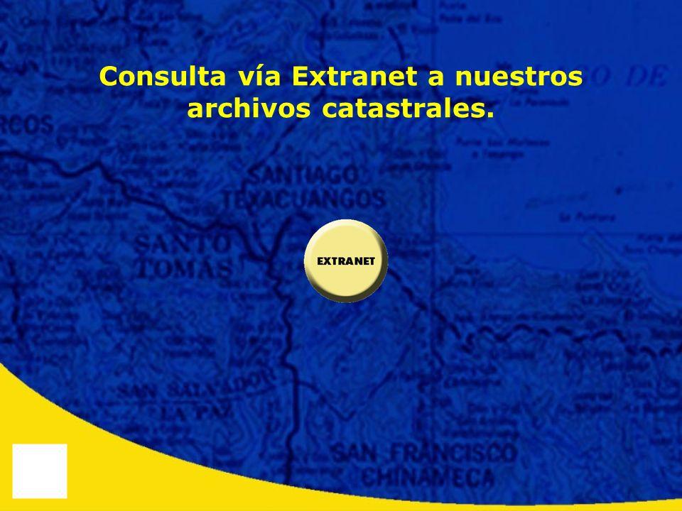 Consulta vía Extranet a nuestros archivos catastrales.
