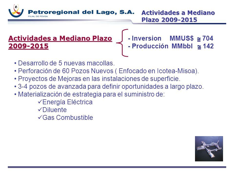 Actividades a Mediano Plazo 2009-2015 - Inversion MMUS$ ~ 704