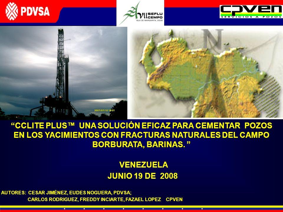CCLITE PLUS™ UNA SOLUCIÓN EFICAZ PARA CEMENTAR POZOS EN LOS YACIMIENTOS CON FRACTURAS NATURALES DEL CAMPO BORBURATA, BARINAS.