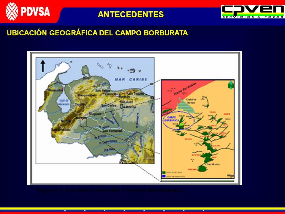 ANTECEDENTES UBICACIÓN GEOGRÁFICA DEL CAMPO BORBURATA