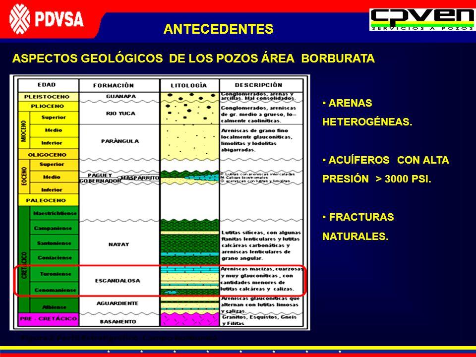 ANTECEDENTES ASPECTOS GEOLÓGICOS DE LOS POZOS ÁREA BORBURATA