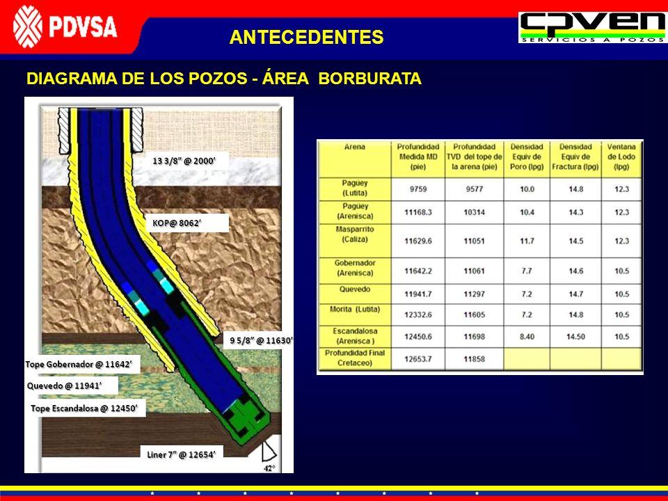 ANTECEDENTES DIAGRAMA DE LOS POZOS - ÁREA BORBURATA