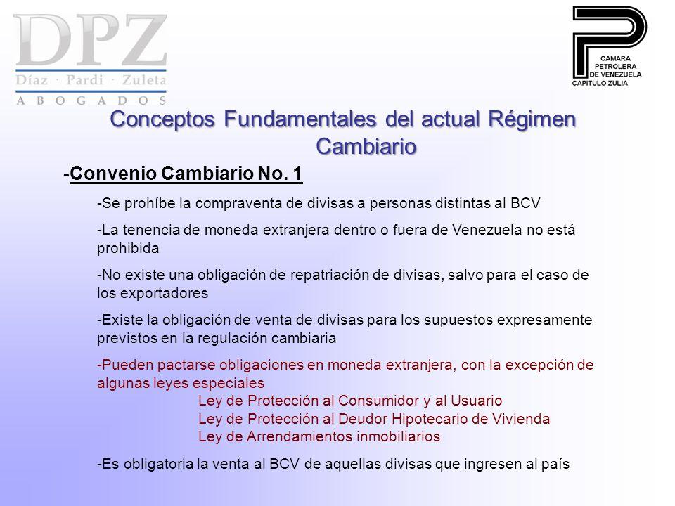 Conceptos Fundamentales del actual Régimen Cambiario