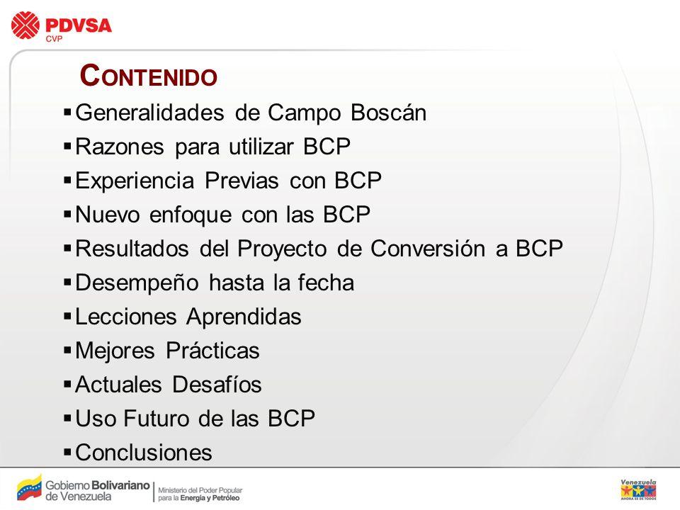 CONTENIDO Generalidades de Campo Boscán Razones para utilizar BCP