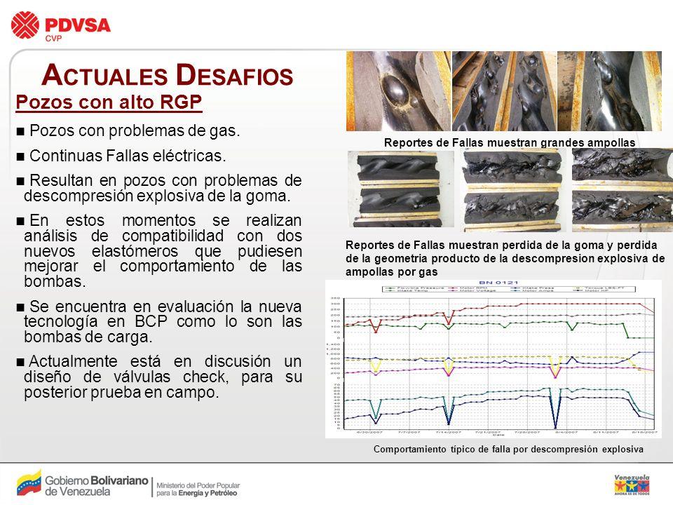 ACTUALES DESAFIOS Pozos con alto RGP Pozos con problemas de gas.