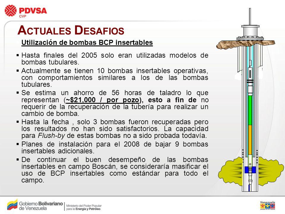 ACTUALES DESAFIOS Utilización de bombas BCP insertables