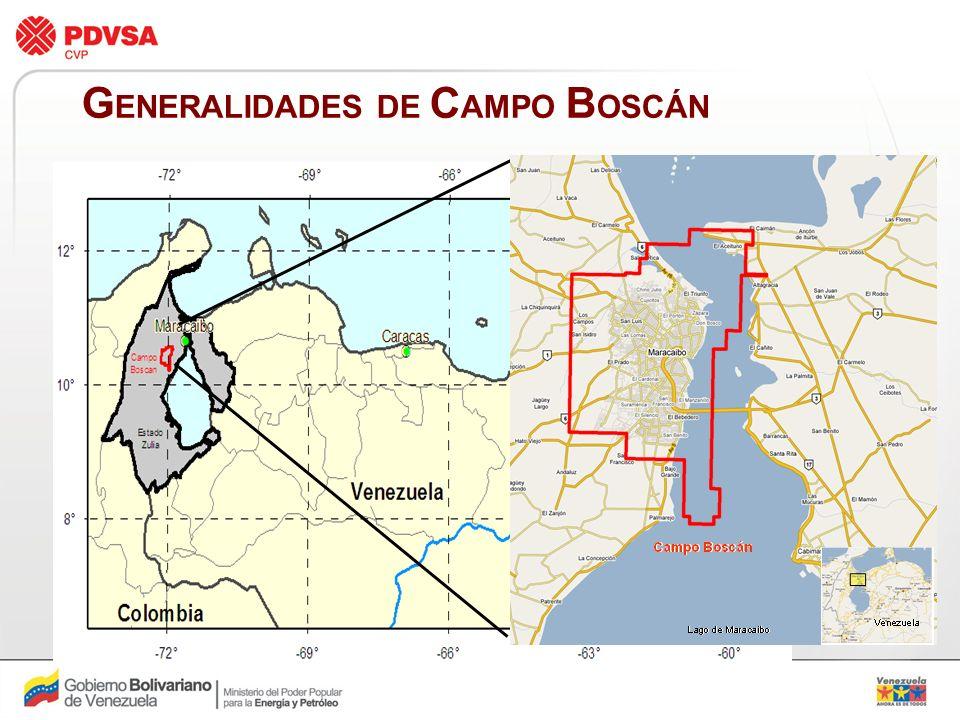 GENERALIDADES DE CAMPO BOSCÁN