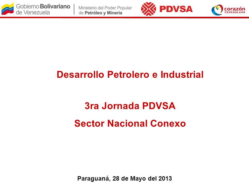 Desarrollo Petrolero e Industrial Sector Nacional Conexo