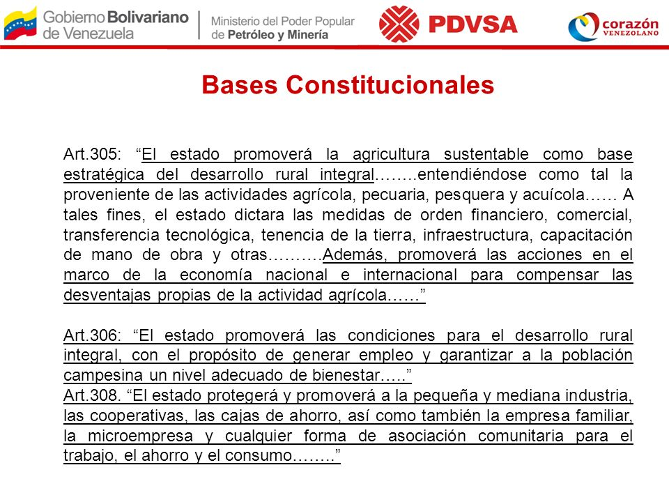 Bases Constitucionales
