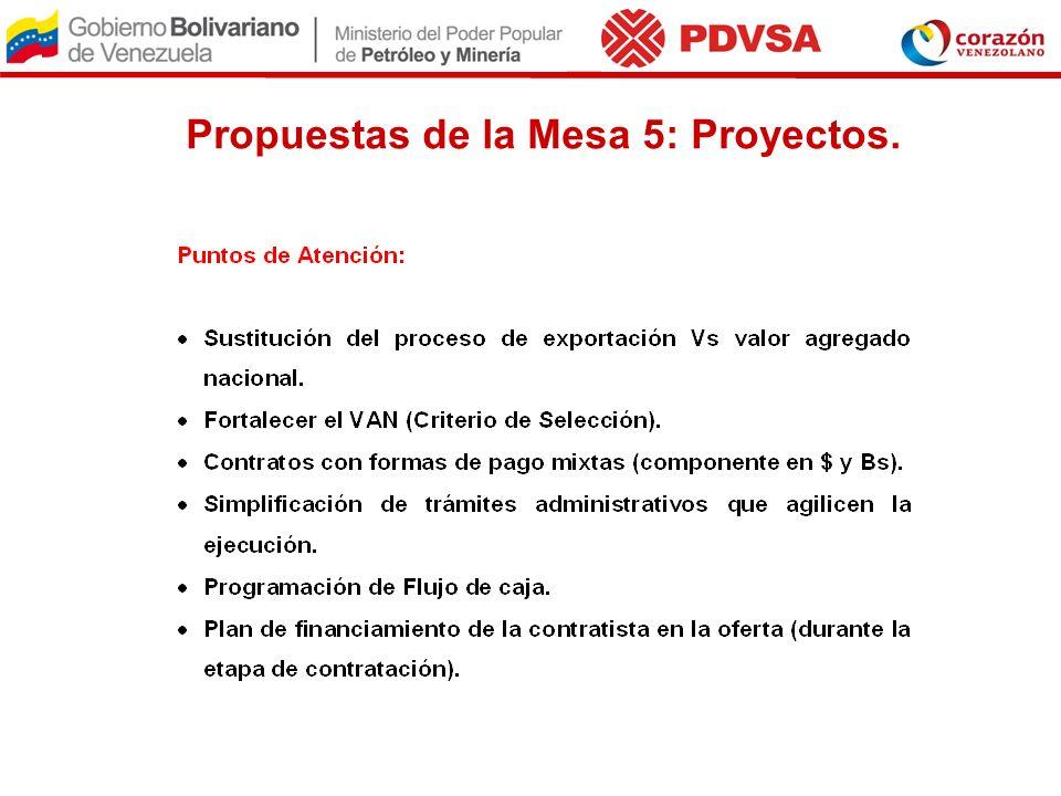 Propuestas de la Mesa 5: Proyectos.