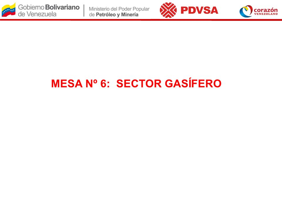 MESA Nº 6: SECTOR GASÍFERO