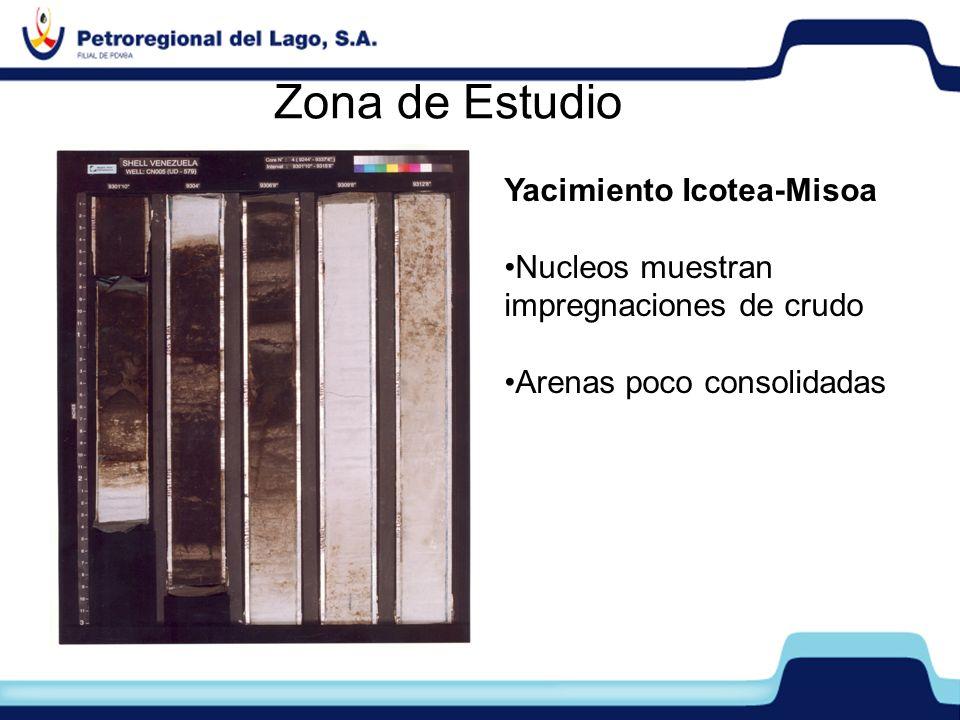 Zona de Estudio Yacimiento Icotea-Misoa