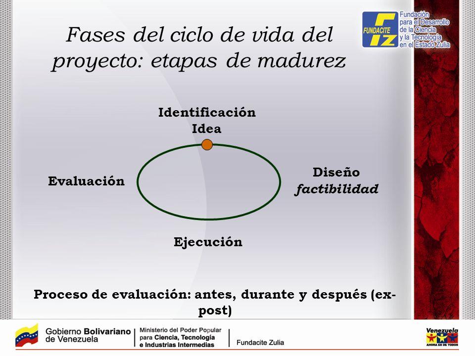 Fases del ciclo de vida del proyecto: etapas de madurez