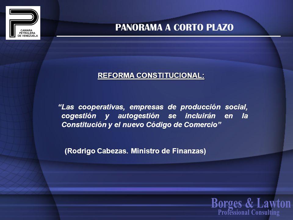 REFORMA CONSTITUCIONAL: Professional Consulting