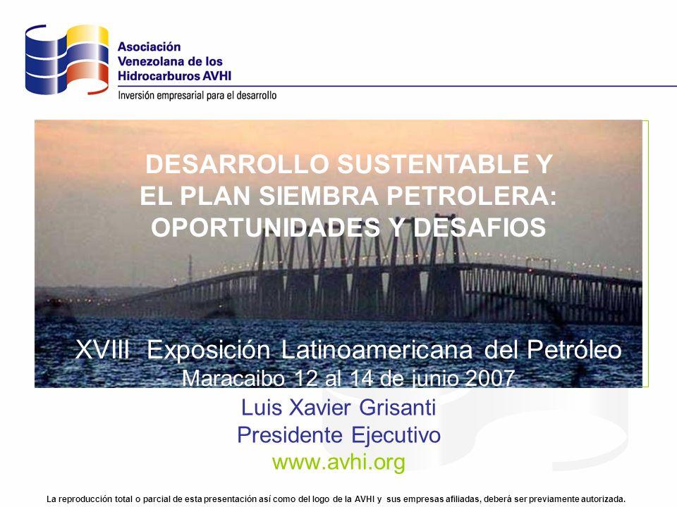 Luis Xavier Grisanti Presidente Ejecutivo www.avhi.org