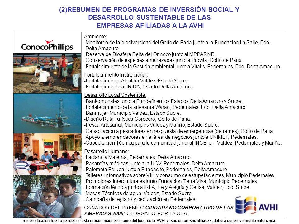 (2)RESUMEN DE PROGRAMAS DE INVERSIÓN SOCIAL Y