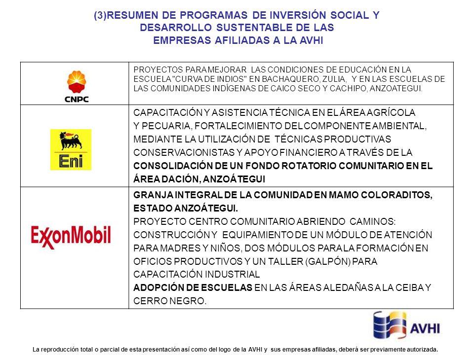 (3)RESUMEN DE PROGRAMAS DE INVERSIÓN SOCIAL Y
