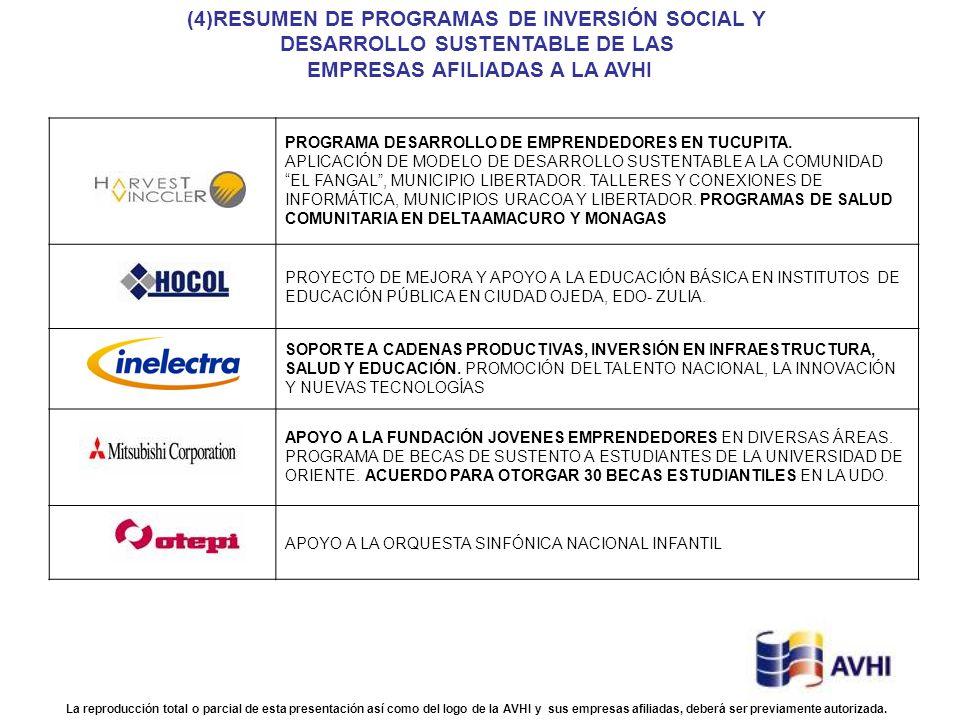 (4)RESUMEN DE PROGRAMAS DE INVERSIÓN SOCIAL Y